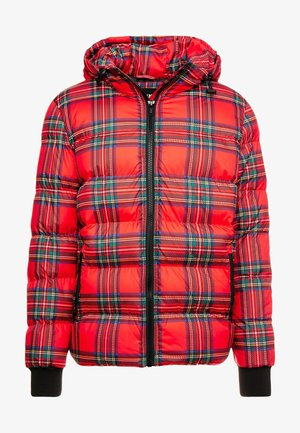 HOODED CHECK JACKET - Winter jacket - red/black