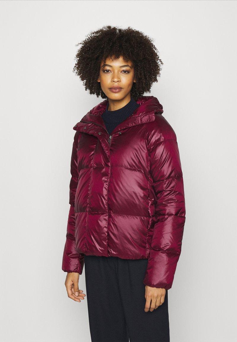 NAF NAF - BONUS - Down jacket - raisin