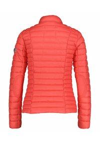 Frieda & Freddies - Winter jacket - original - 3