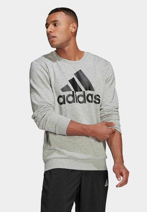"HERREN SWEATSHIRT ""ESSENTIAL BIG LOGO"" - Sweatshirt - grau"