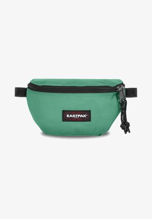 SPRINGER PEANUTS - Bum bag - melted mint