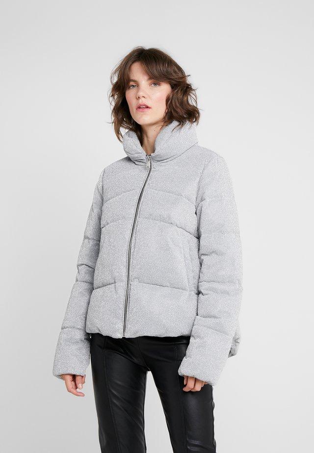 PERVENIRE PIUMINO - Winter jacket - grey