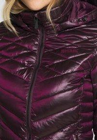 Regatta - ANDEL - Winter coat - prune - 5