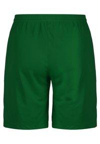Nike Performance - DRY PARK III - Sports shorts - pine green / white - 1