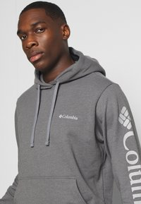 Columbia - VIEWMONTII SLEEVE GRAPHIC HOODIE - Hoodie - city grey