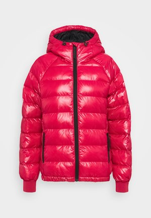 TOMIC PUFFER - Winter jacket - the alpine