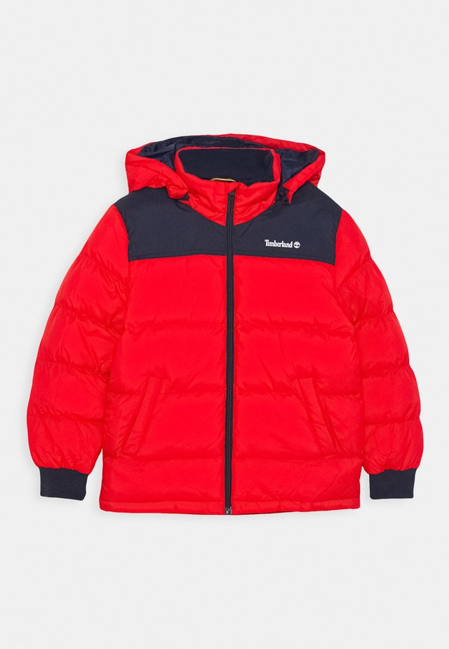 PUFFER JACKET - Zimní bunda - bright red