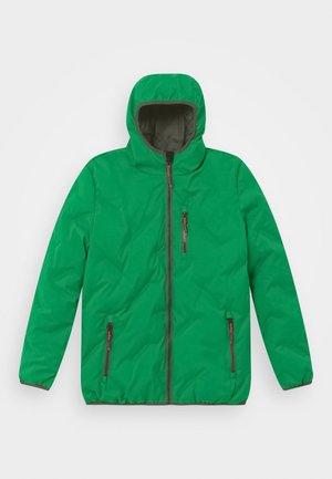 LYNGE QUILTED - Winter jacket - grün
