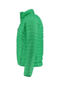 Meru - COLLINGWOOD - Winter jacket - grün (400) - 2