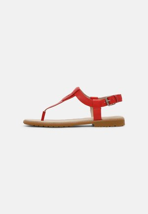 CHICAGO RIVERSIDE - Flip Flops - red