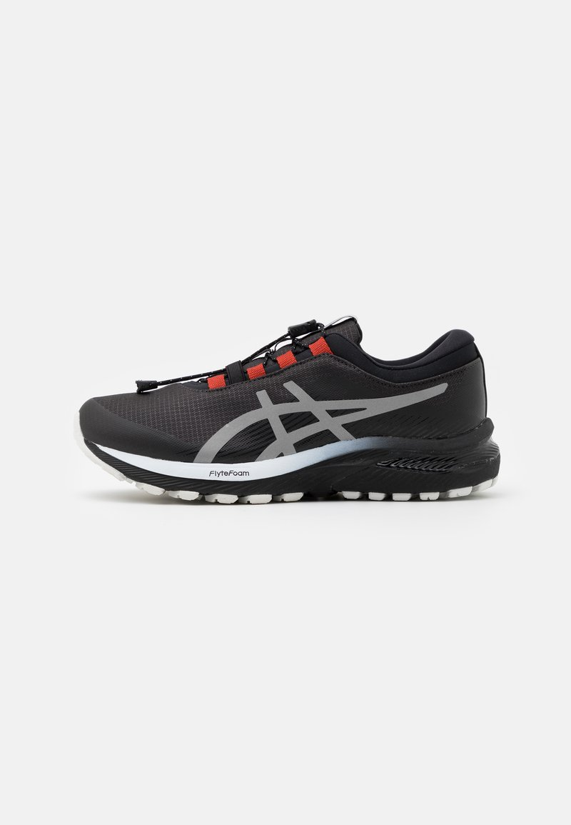 ASICS - GEL-CUMULUS 22 WINTERIZED - Neutral running shoes - graphite grey/pure silver