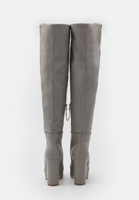 RAID Wide Fit - WIDE FIT CAROLINA - Over-the-knee boots - grey - 3