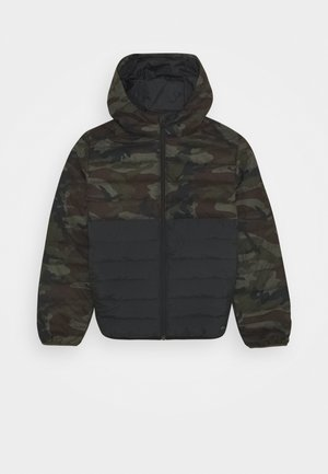 SCALY MIX YOUTH - Winter jacket - green/black