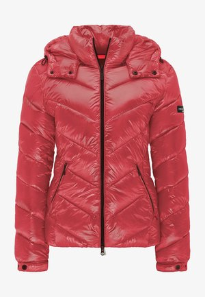 CASSEDY - Winter jacket - dark rose