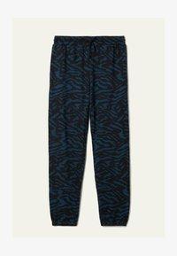 blu grafite st.zebra