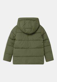 GAP - BOY WARMEST - Winter jacket - desert cactus - 1