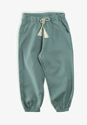 PANT - Tracksuit bottoms - metallic green