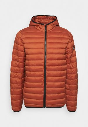 TALAN - Winter jacket - pecan orange