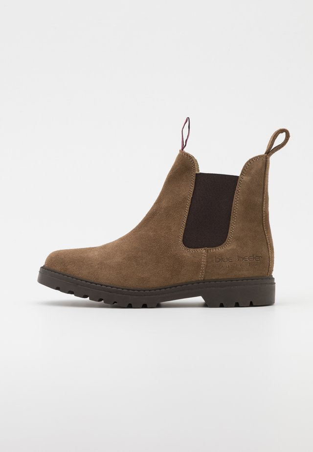 FRASER - Bottines - tobacco/brown