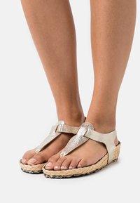 MAHONY - T-bar sandals - gold - 0