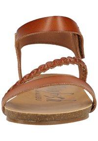 Blowfish Malibu - Sandals - scotch - 3