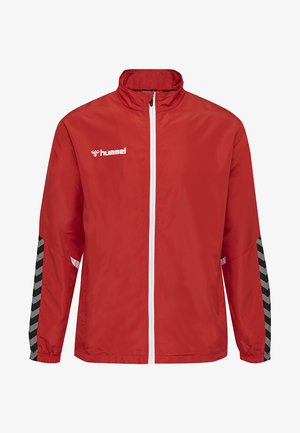 AUTHENTIC MICRO - Training jacket - true red