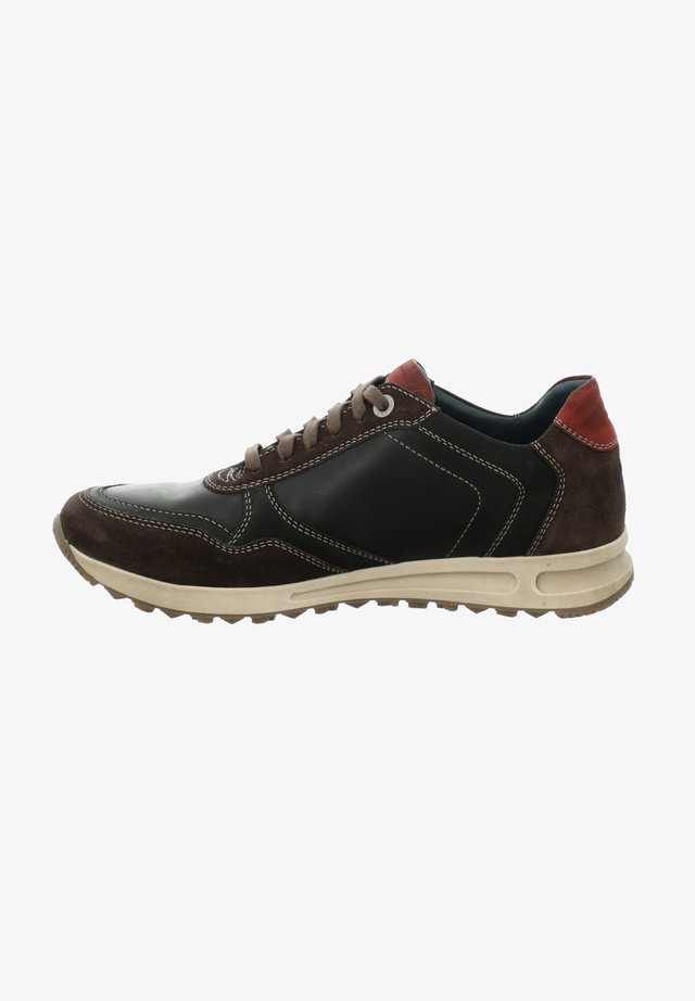 THADDEUS  - Sneakers - vulcano-multi