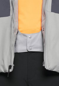 The North Face - CHAKAL JACKET - Ski jacket - grey/light grey - 5
