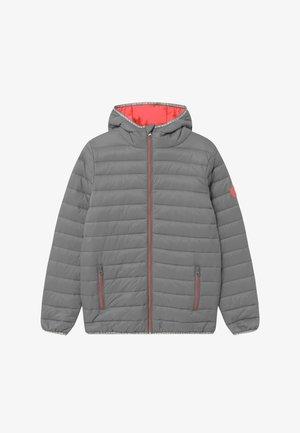 TEENS BIG - Winter jacket - silver grey/peach