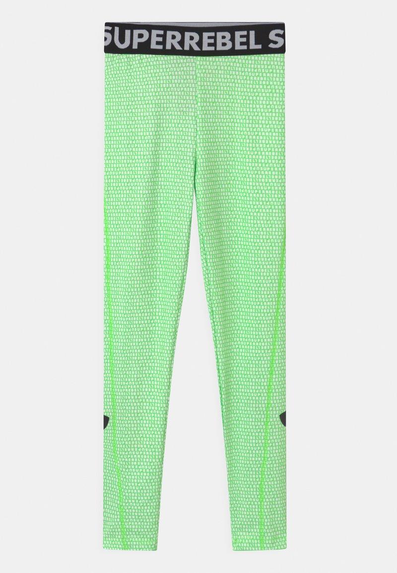 SuperRebel - UNISEX - Punčochy - gecko green