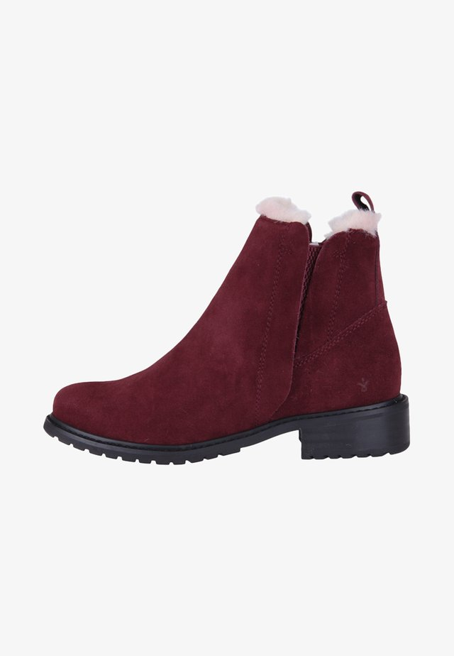 PIONEER - Classic ankle boots - bordeaux