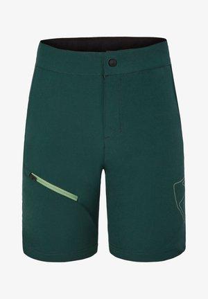 Shorts - spruce green