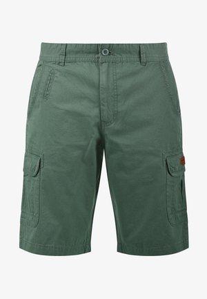 CRIXUS - Shorts - balsam green