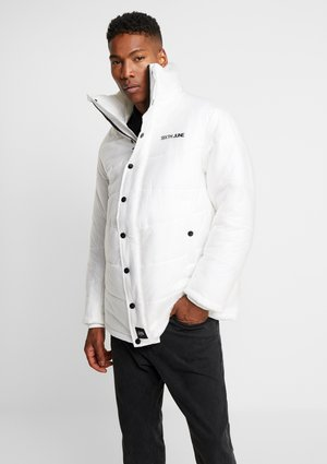 TRANSPARENT FABRIC DOWNJACKET - Winter jacket - white