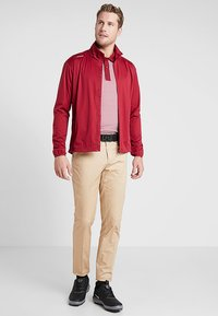 Cross Sportswear - SLENDER - Chinosy - deep birch - 1