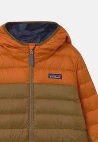 Patagonia - BOYS REVERSIBLE HOODY - Down jacket - desert orange - 3