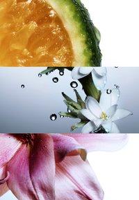 DAVIDOFF Fragrances - DAVIDOFF COOL WATER WOMAN MERA COLLECTOR'S EDITION EAU DE TOILET - Eau de Toilette - - - 2