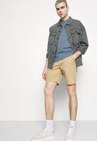 Hollister Co. - Shorts - light khaki - 4
