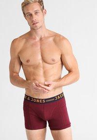 Jack & Jones - JACLICHFIELD 3 PACK  - Pants - burgundy - 0