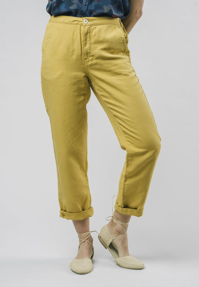 NARCISO - Chino - yellow