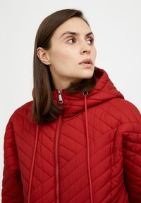 Finn Flare - Down jacket - red-brown - 4