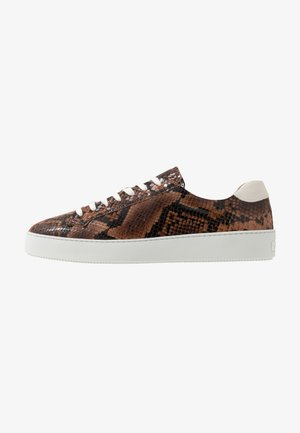 SALAS - Sneakers laag - dark brown