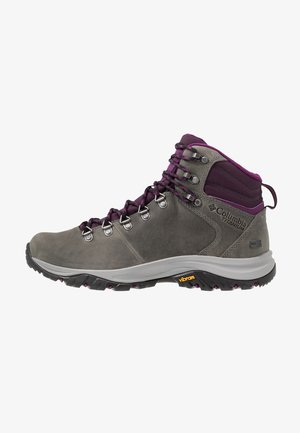 100MW TITANIUM OUTDRY - Outdoorschoenen - ti grey steel/black cherry