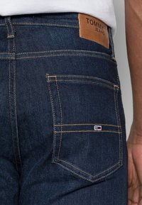 Tommy Jeans - RYAN STRAIGHT - Jeans straight leg - lake raw stretch - 4