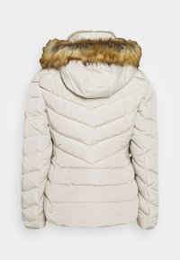 TOM TAILOR - SIGNATURE PUFFER JACKET - Winter jacket - dusty alabaster