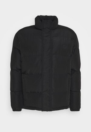 SANTA CRUZ CHANCE JACKET UNISEX - Winter jacket - black