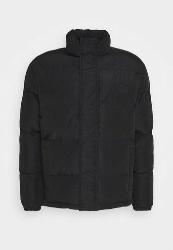 SANTA CRUZ CHANCE JACKET UNISEX - Winter jacket - black
