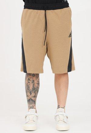 Shorts - cardboard