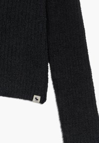 Abercrombie & Fitch - BACK DETAIL MATCH - Trui - open black - 3