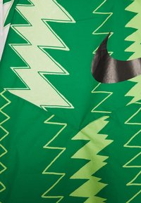 Nike Performance - NFF NIGERIA PONCHO - National team wear - pine green/sub lime/pure platinum/black - 3